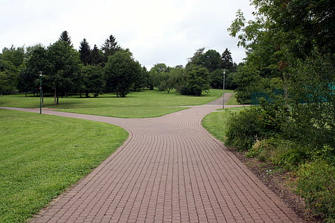 away-road-park-trees-thumbnail